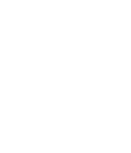 Living Stone Logo agency